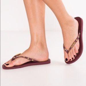 Havianas Flip Flop Sandals Grape Wine Burgundy 6